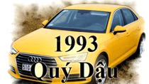Tuổi Quý Dậu 1993 mua xe màu gì?