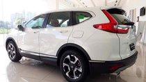 Bán Honda CR V đời 2019, màu trắng, nhập khẩu