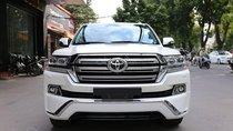 Toyota Land Cruiser VXR 4.6 sx 2019, màu trắng, nhập khẩu trung đông