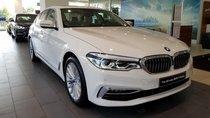 Bán ô tô BMW 5 Series đời 2019, màu trắng, nhập khẩu nguyên chiếc