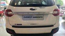 Bán Ford Everest năm 2019, màu trắng, nhập khẩu, giá 979tr