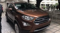 Hà Nội Ford - Ford EcoSport 2019 mới, giá chỉ từ 605tr - KM tặng phụ kiện, bảo hiểm - LH ngay: 0934.696.46 để ép giá