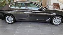 Bán BMW 5 Series 520i đời 2019, màu nâu, mới 100%