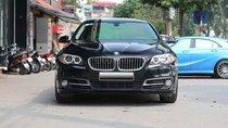 Bán ô tô BMW 5 Series BMW 535i 2014, màu đen, xe nhập Đức