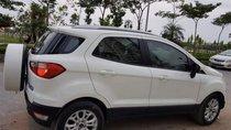 Bán xe Ford EcoSport Titanium 2016, màu trắng, nhập khẩu