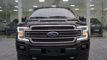 MT Auto bán Ford F 150 đời 2019, màu đen, nhập khẩu Mỹ nguyên chiếc - LH em Hương 0945392468
