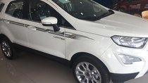 Bán xe Ford Ecosport 1.0L AT Titanium 2019