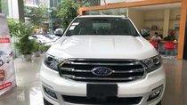 Bán Ford Everest năm sản xuất 2019, màu trắng, nhập khẩu nguyên chiếc giá cạnh tranh