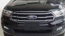 Bán Ford Everest năm sản xuất 2019, màu đen, nhập khẩu Thái