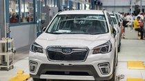 Subaru Forester 2019 về tới Việt Nam, rẻ hơn phiên bản cũ