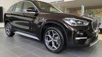 Cần bán xe BMW X1 đời 2019, màu nâu, xe nhập