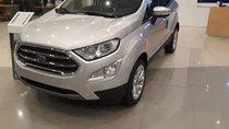 Bán Ford EcoSport sản xuất 2019, màu bạc