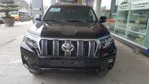 Toyota Land Cruiser Prado 2019, nhập khẩu, giao ngay, hotline 0987404316 - 0355283111
