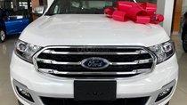 Ford Everest 2.0L Titanium 2019, tặng phụ kiện. Hỗ trợ vay 80%. LH: 0902172017 - Em Mai