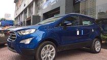 Cần bán xe Ford EcoSport đời 2019, màu xanh lam