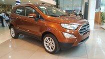 Bán Ford EcoSport siêu ưu đãi tặng BHVC, phim, camera, tiền mặt