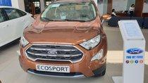 Ford Ecosport 2019, giảm giá tiền mặt và tặng quà hấp dẫn nhất Miền Nam