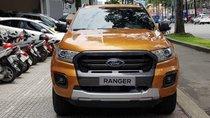 Bán Ford Ranger Wildtrak đời 2019, nhập khẩu, giá chỉ 900 triệu
