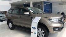 Bán ô tô Ford Everest năm sản xuất 2019, nhập khẩu, mới 100%