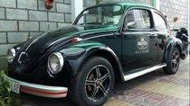 Bán Volkswagen Beetle năm sản xuất 1980, nhập khẩu nguyên chiếc chính chủ