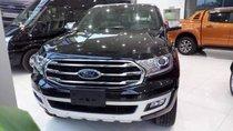 Cần bán xe Ford Everest năm 2019, màu đen, nhập khẩu nguyên chiếc