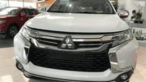 Cần bán Mitsubishi Pajero Sport đời 2019, xe nhập