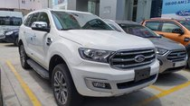 Ford Everest nhập khẩu nguyên chiếc Thái Lan, quà tặng khủng, giá chỉ từ 979tr