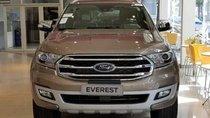 Bán xe Ford Everest năm sản xuất 2019, màu vàng