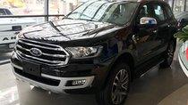 Cần bán Ford Everest Ambiente 2.0 MT 4x2 sản xuất năm 2019, màu đen, nhập khẩu nguyên chiếc