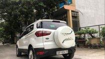 Bán xe Ford EcoSport đời 2017, màu trắng xe gia đình, giá chỉ 549 triệu