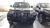 Bán Toyota Land Cruiser VX đời 2019, màu đen, xe nhập