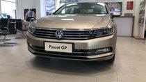 Bán Volkswagen Passat GP cao cấp - Xe sản xuất tại Đức - K/M lớn