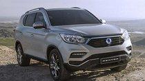 Ssangyong Rexton 2020 ra mắt Philippines, đối đầu Honda CR-V và Hyundai Tucson