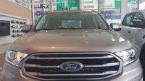 Bán Ford Everest năm sản xuất 2019, nhập khẩu, giá cạnh tranh