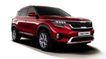 5 điều cần biết về Kia Seltos 2019 - 'anh em' của Hyundai Kona có gì đặc biệt?