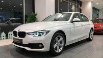 Bán BMW 320i 2019, màu trắng, nhập khẩu