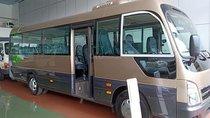 Bán ô tô Hyundai County đời 2019, màu vàng
