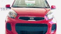 KIA Morning Standard giá ưu đãi – Trả trước 120 triệu nhận xe ngay