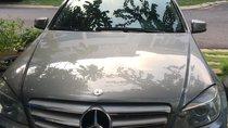 Cần bán xe Mercedes năm 2008, màu xám, xe nhập, giá 460tr