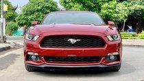 Bán Ford Mustang 2.3 Ecoboost đời 2016, màu đỏ, nhập khẩu