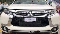 Cần bán xe Mitsubishi Pajero MT sản xuất năm 2019