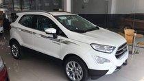 Bán ô tô Ford EcoSport Ambiente 1.5 MT đời 2019, màu trắng