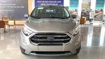 Bán Ford EcoSport Titanium 1.5L AT đời 2019, màu xám, giá cạnh tranh