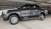 Bán Ford Ranger Wildtrak đời 2019, màu xám, nhập khẩu