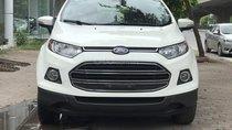 Bán ô tô Ford EcoSport Titanium 2016, màu trắng giá cạnh tranh