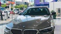 Bán xe BMW 5 Series 530i  Luxury sản xuất năm 2019, xe nhập