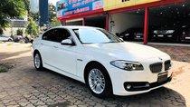 Bán ô tô BMW 5 Series 520i sản xuất năm 2014, màu trắng, xe nhập