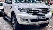 Bán Ford Everest 2019 có xe giao ngay, bao hồ sơ vay lên đến 100%, chưa gọi cho Dũng 0908.937.238 thì chưa mua xe