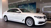 Bán BMW 5 Series 530i đời 2019, màu trắng, xe nhập