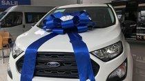 Bán Ford EcoSport năm 2019, màu trắng
